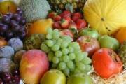 Curso de Fruticultura: Abacateiro, Goiabeira e Aceroleira.