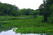 Parque Nacional de Ilha Grande