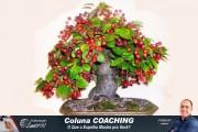 Douglas Alberto - Coaching - 02-C - Id