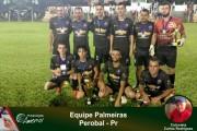 Equipe-Palmeiras-Perobal